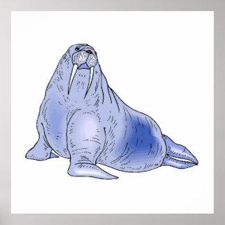Blue Walrus Posters