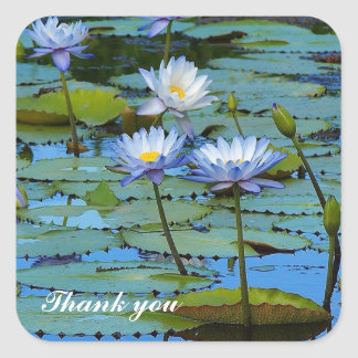 Blue water lilies thank you sticker