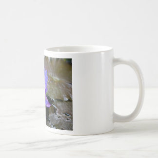 Blue Water Lily Classic White Coffee Mug