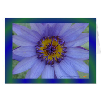 Blue Water Lily Flower Greeting Card