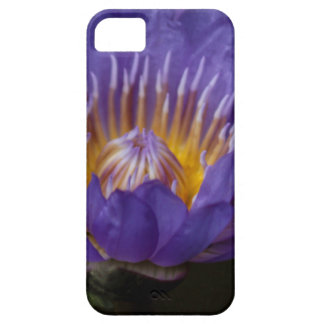 Blue water lily iPhone 5 cases