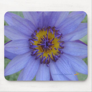 Blue Water Lily Mousepad