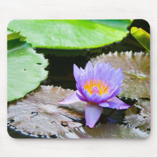Blue Water Lily Mouse Pad