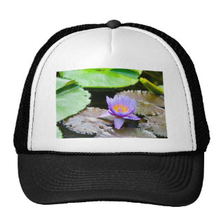 Blue Water Lily Trucker Hat