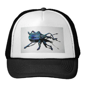 Blue Weevil Products Trucker Hat