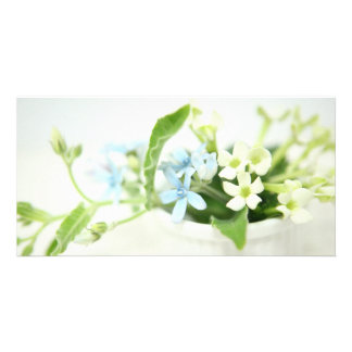 Blue & White flower cards. Photo Card