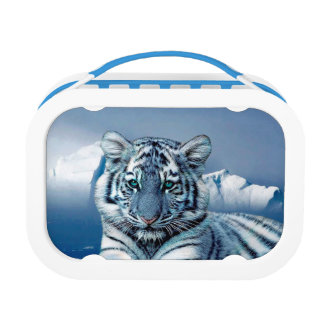 Blue White Tiger Lunch Boxes