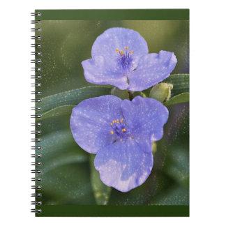 Blue Wildflower Notebooks