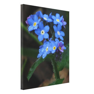 Blue Wildflowers Gallery Wrapped Canvas