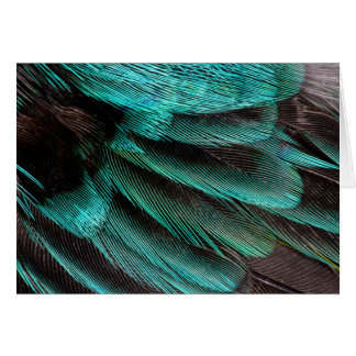 Blue Wing Covert feathers Card