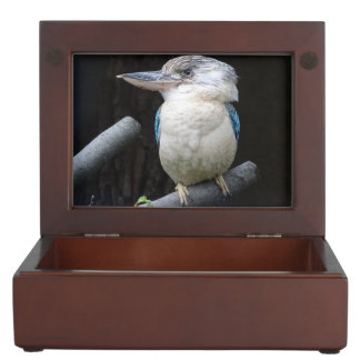 Blue-winged kookaburra keepsake box