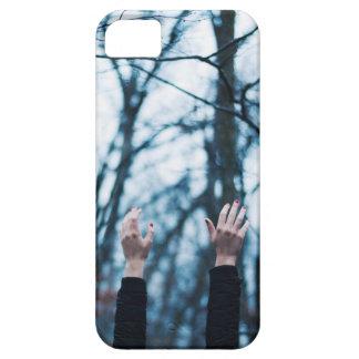 Blue Winter Solstice iPhone 5 Cases