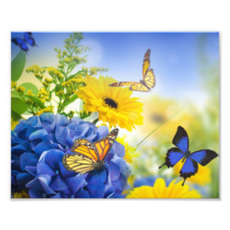 Blue Yellow Flowers With Butterflies Photo Print
