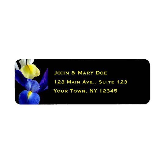 Blue & Yellow Iris Flowers 4b