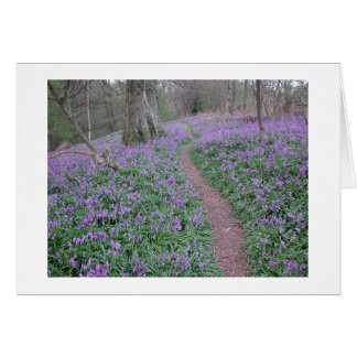 bluebell path card