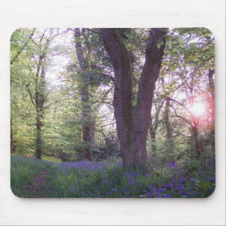 Bluebell Walk Mouse Pad