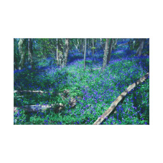 Bluebell Wood England Canvas Print