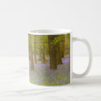 Bluebell Wood Mug