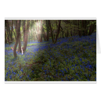 Bluebell Woods Card