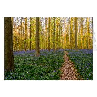 Bluebells Carpet Card