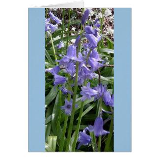 Bluebells Close Up Photo Card - Tall