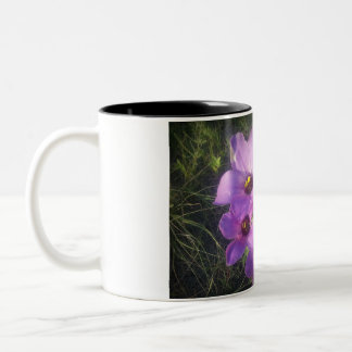 Bluebells Two-Tone Coffee Mug