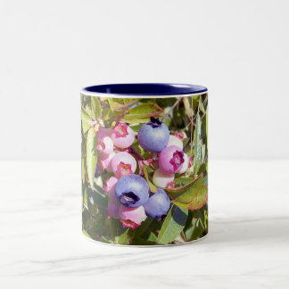 Blueberries 1 Mug
