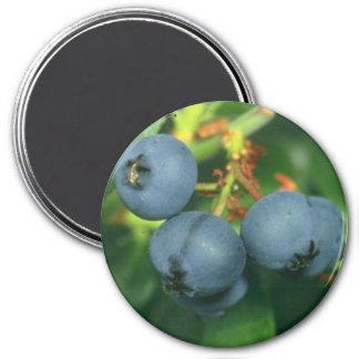 BLUEBERRIES 3 INCH ROUND MAGNET