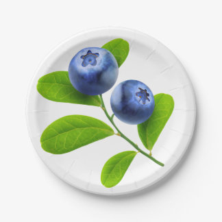 Blueberries Paper Plate