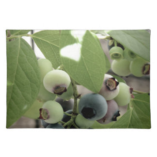 Blueberries Placemats