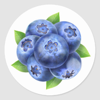Blueberries round composition round sticker