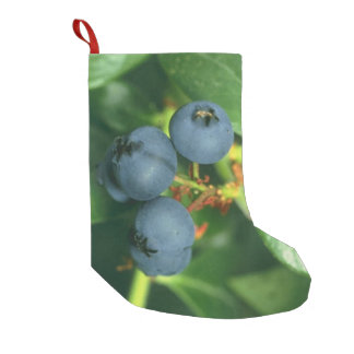 Blueberries Small Christmas Stocking