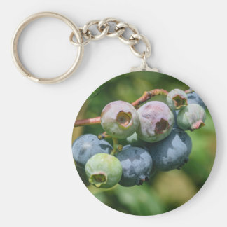Blueberry Bush Basic Round Button Keychain