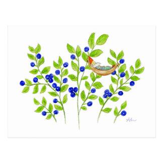 Blueberry Bush Gnome postcard