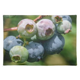 Blueberry Bush Placemat