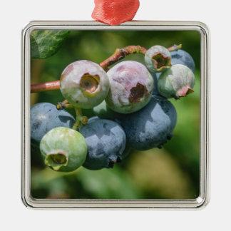 Blueberry Bush Silver-Colored Square Ornament