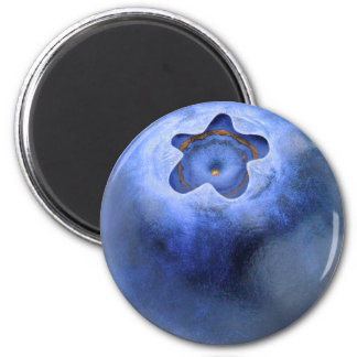 Blueberry Magnet