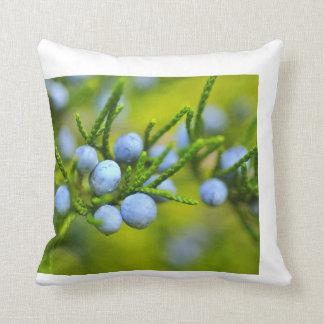 Blueberry pillow
