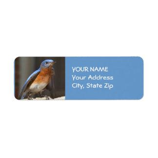 Bluebird Address Label