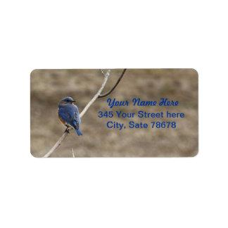Bluebird Address Labels