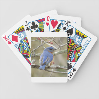 Bluebird Backside Bicycle Playing Cards