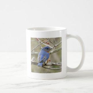 Bluebird Backside Coffee Mug