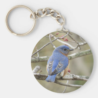 Bluebird Backside Keychain