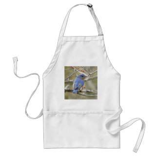 Bluebird Backside Standard Apron