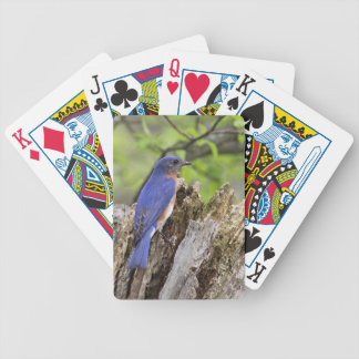 Bluebird Bicycle Playing Cards