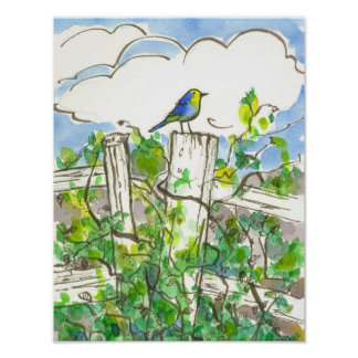 Bluebird Brambles Blue Sky Poster