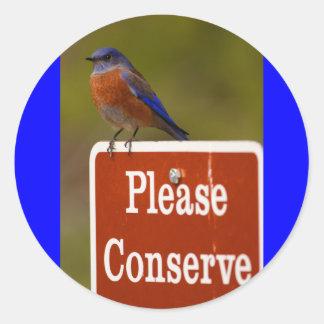 bluebird classic round sticker