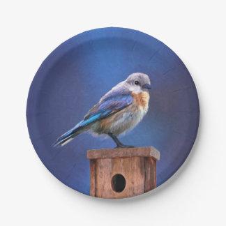 Bluebird (Female) 7 Inch Paper Plate