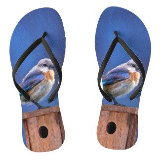 Bluebird (Female) Flip Flops
