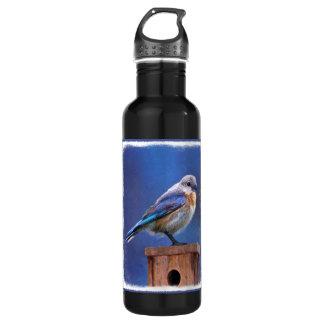 Bluebird (Female) Painting - Original Bird Art 710 Ml Water Bottle